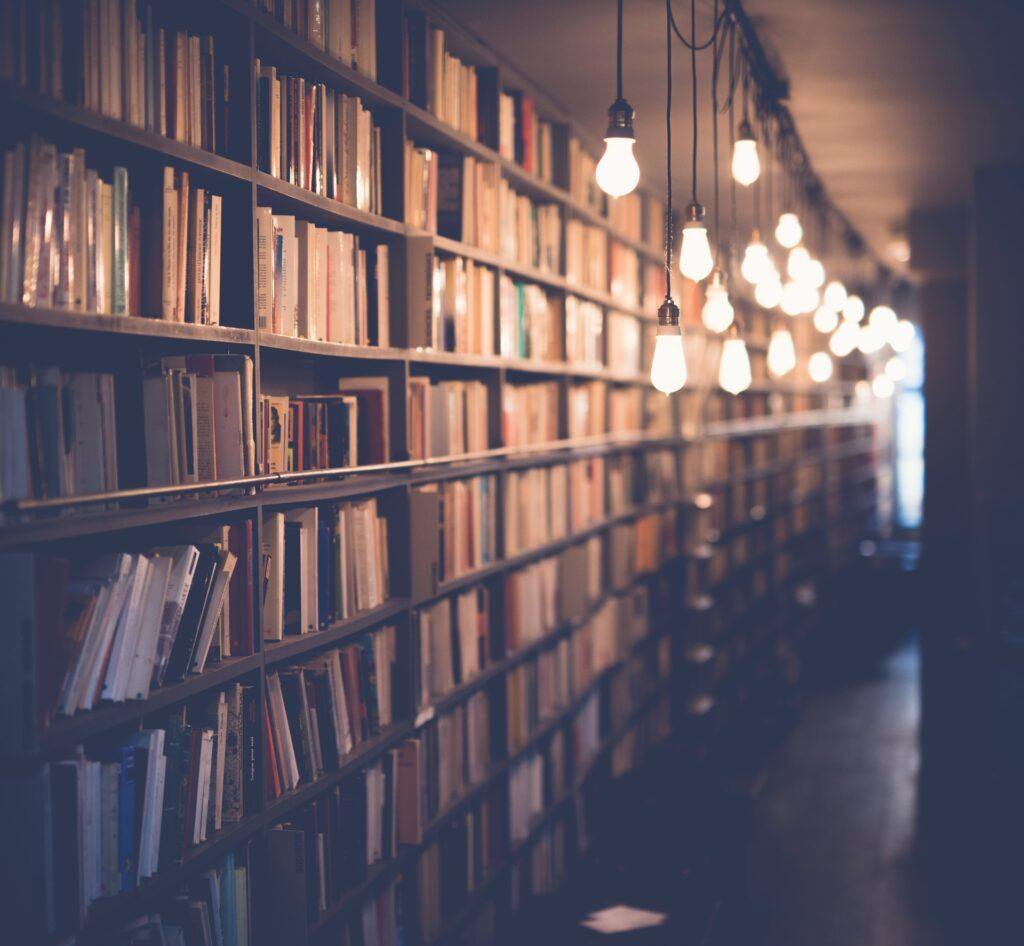 28 libros